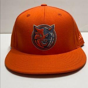 Charlotte Bobcats Hat